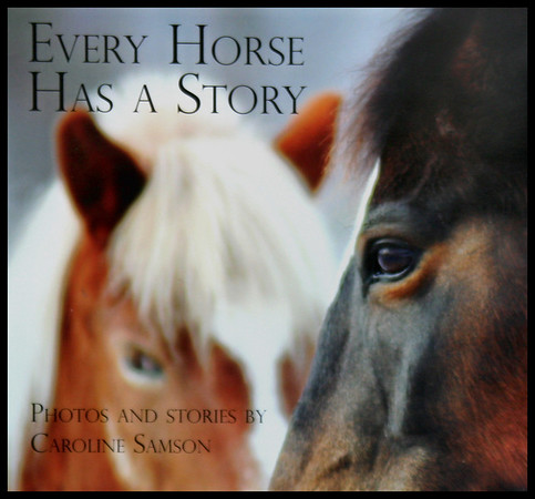 Every Horse Has a Story