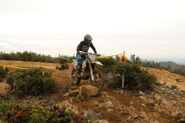 Rider 293