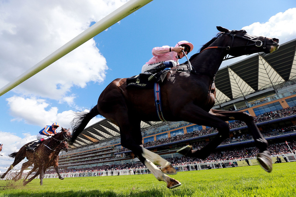 . The Fugue ridden by William Buick, leads the field, on their way to victory in the Prince of Wales\'s Stakes, during Day Two of the 2014 Royal Ascot Meeting in Ascot, England, Wednesday June 18, 2014. (AP Photo/PA, David Davies)