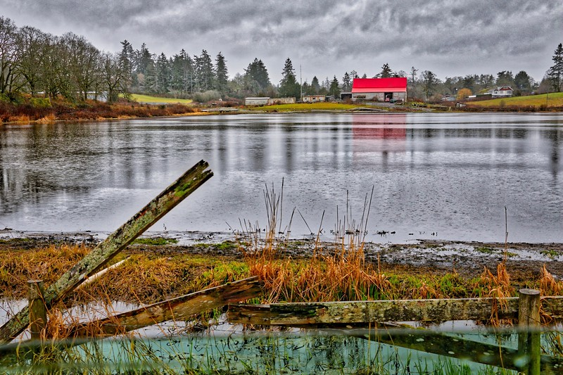 Flooded Farm Field on Hastings Rd