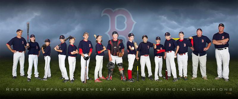Peewee AA Buffalos Baseball.jpg