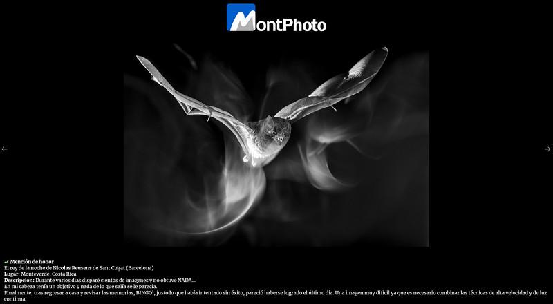 Montphoto Mención.jpg
