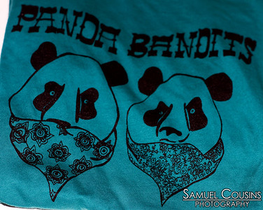 Hillytown Offstage: Jesse Pilgrim, Dan Wholey, & Panda Bandits