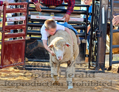 2016 Mutton Bustin Sunday 9/4/2016