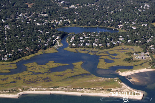 Taylor Pond - Chatham