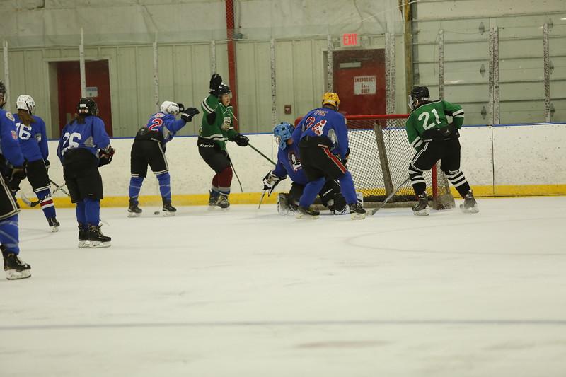 Grizzlies vs Hockeynauts Championship