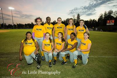 Falcons Softball