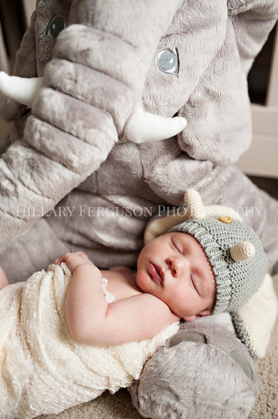 Hillary_Ferguson_Photography_Carlynn_Newborn028.jpg