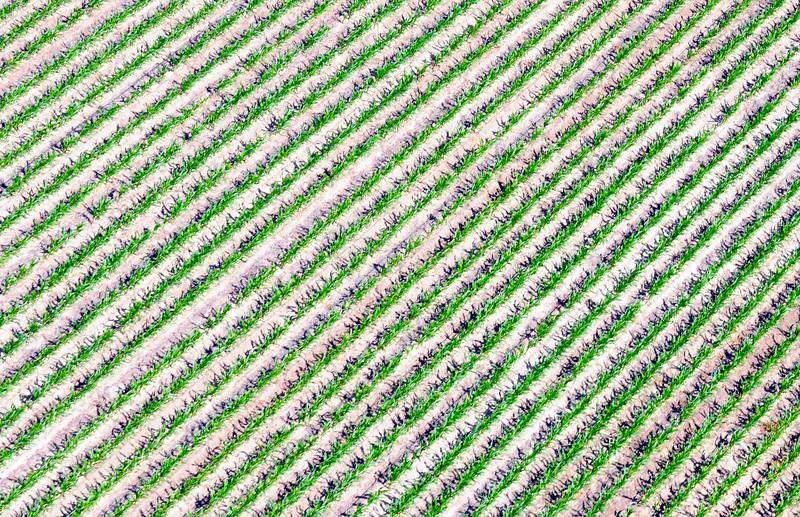 Ehrhardt Aerials_7.jpg