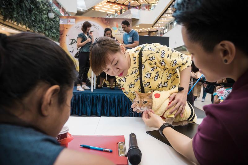 VividSnaps-The-Seletar-Mall-CAT-Dress-Up-Contest-255.jpg