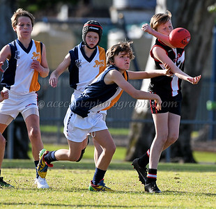 Lucindale/Padthaway Junior Colts - Round 14