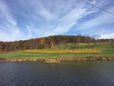 Dutches County. NY. 2017