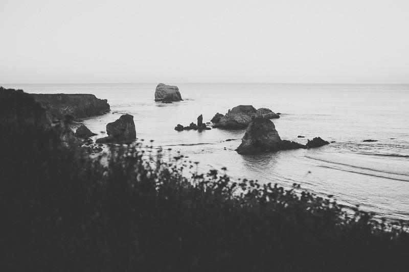 Freewaters_Big_Sur_2014_208.JPG