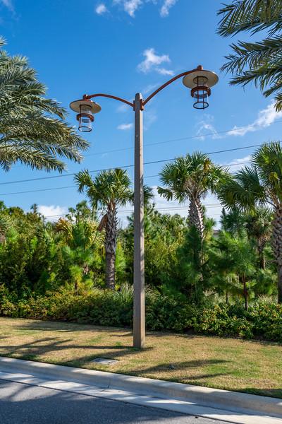 Spring City - Florida - 2019-227.jpg