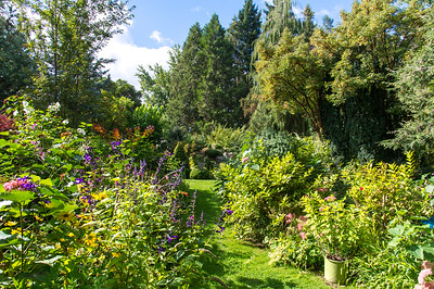 Goodbye party for Teresa - Italio Gardens