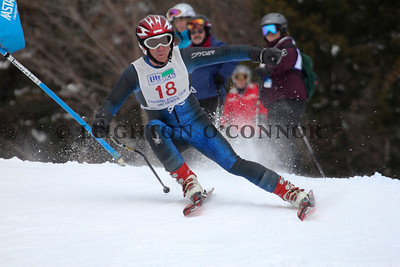 Stock Skiing & Riding Photos
