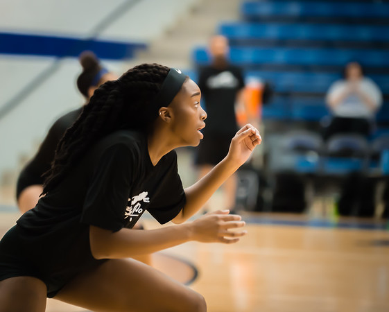 Volleyball, 2015, 08-07-15, NCHS, Denton, Varsity,-10