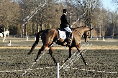 110130 USEA Horse Trial
