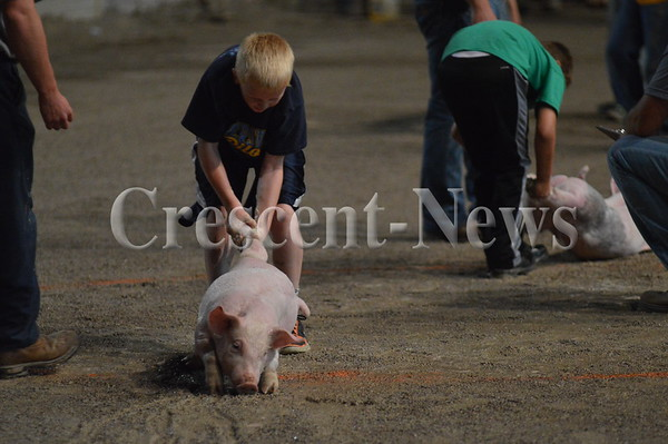 08-22-16 NEWS Pig Catch