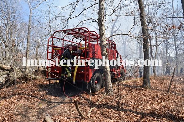 BETHPAGE BRUSH FIRE