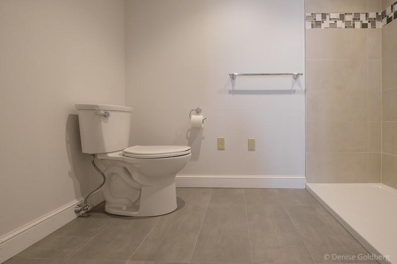 bathroom :: new toilet