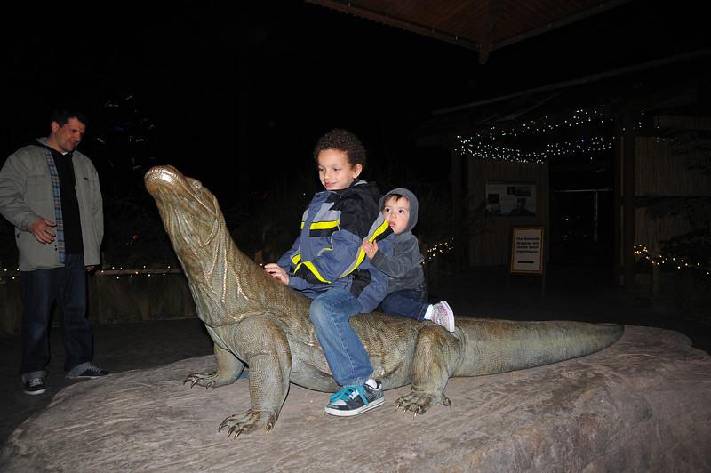 Zoo Lights-042.jpg