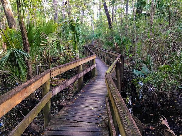 John Chestnut Park - Palm Harbor