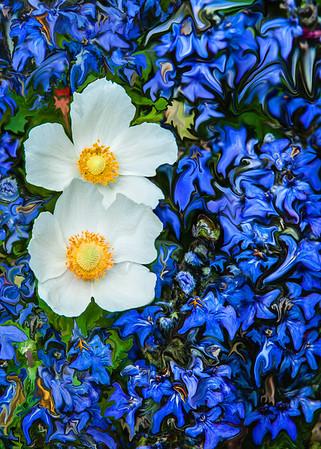 Flora Fauna & Flowers