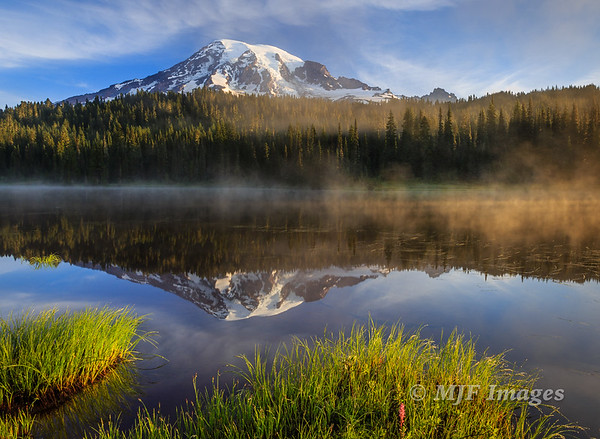 Wild Washington
