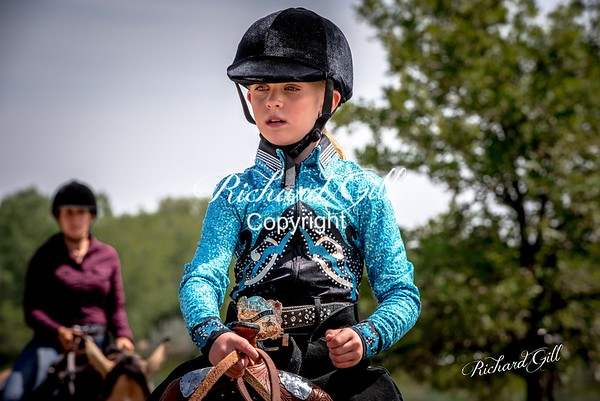 Colorado Stock Horse August 20th 2017
