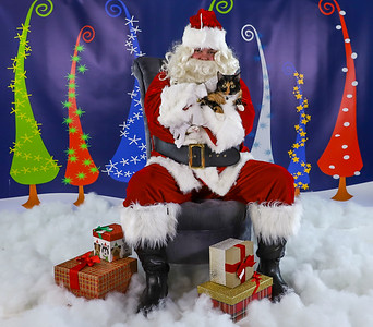 Alexis Stryker - Pet Pics with Santa