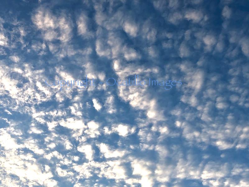 Sky Mackerel.jpg