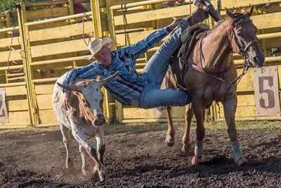 Steer Wrestling Friday 2016