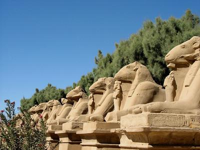 Egypt (02.2006)