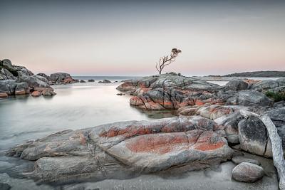 Vicki Moritz - Red rocks Tasmania