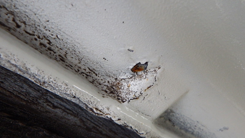 RUST SPOTS COMING THROUGH LOWER SILLS / FLAKING