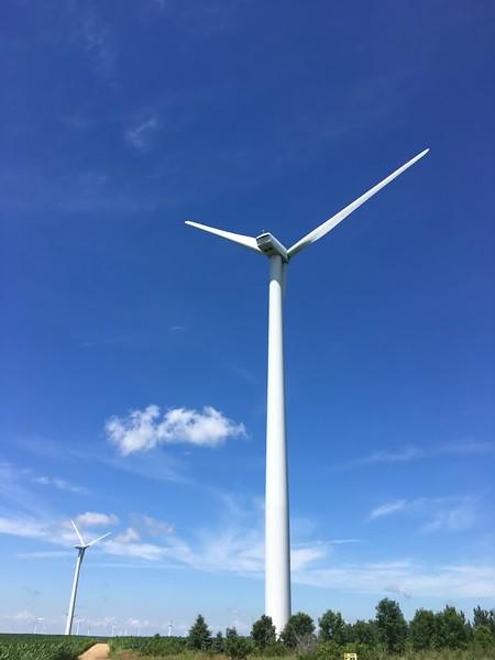 Windfarm near Verdi MN