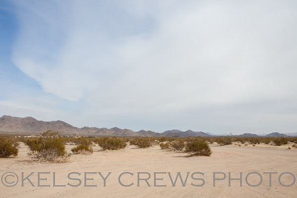 Las Vegas Travel Photography