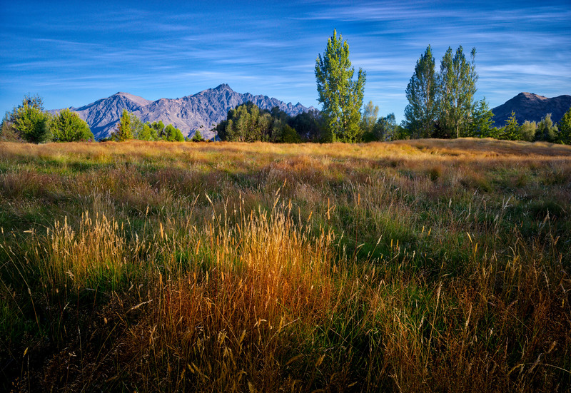 Here's a shot of my back yard in Queenstown, New Zealand. I think this is the first picture I took with the new camera - I was so excited! :)