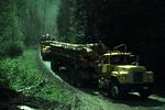 Truck360714.jpg
