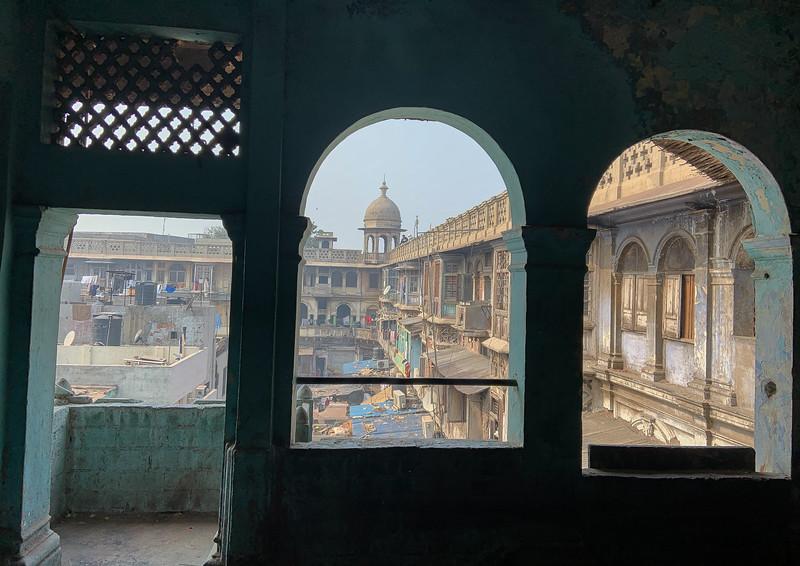 India-Delhi-2019-7115.jpg