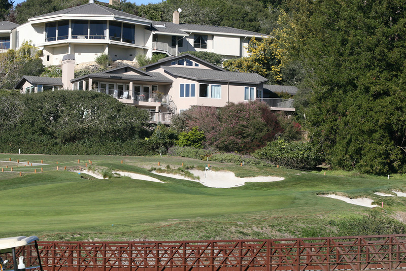 11 green and house 4.JPG