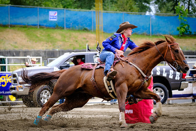 2016 Rodeo Horse Racing
