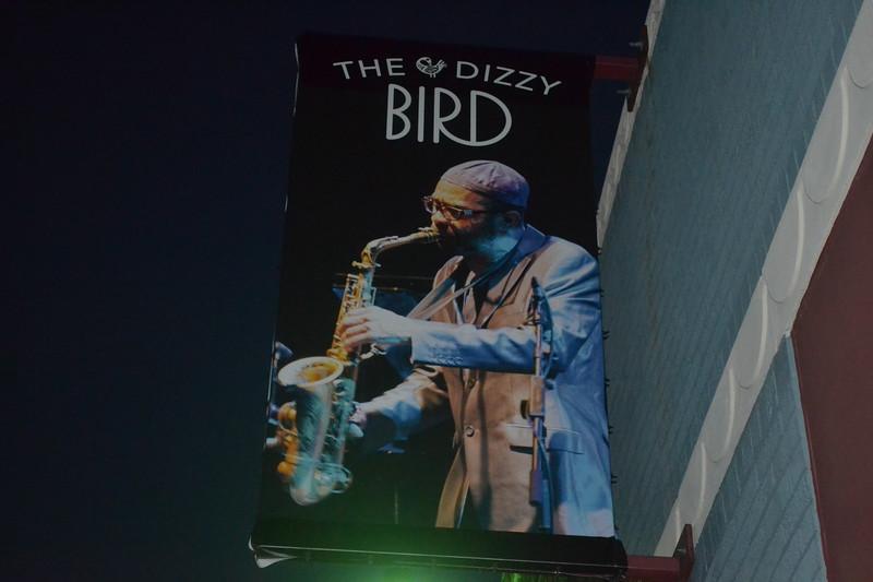 375-the-dizzy-bird_14904502236_o.jpg