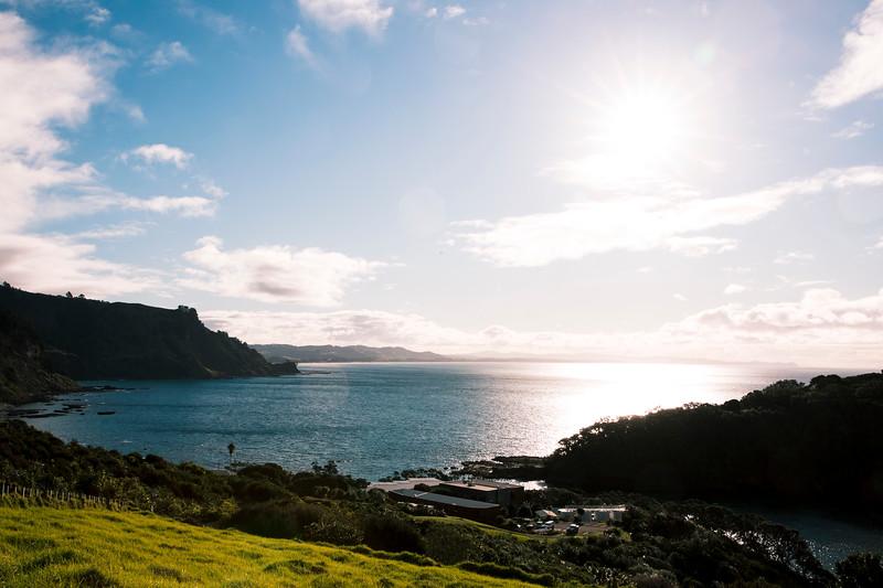 goat-island-011.jpg