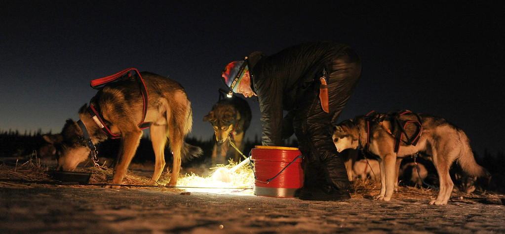 . Mitch Seavey feeds his team at the Finger Lake checkpoint during the 2014 Iditarod Trail Sled Dog Race on Monday, March 3, 2014, near Wasilla, Alaska. (AP Photo/The Anchorage Daily News, Bob Hallinen)
