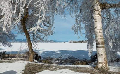 01-28-2017 Hoar frost by Klamath Lake