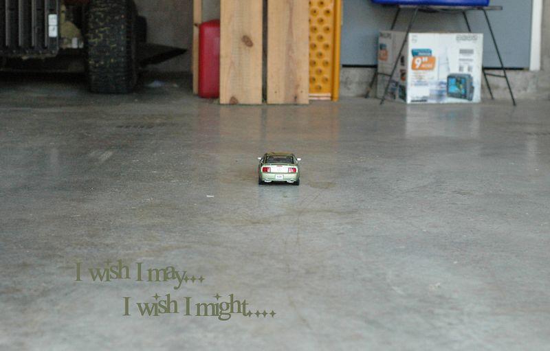 I wish I may...    I wish I might...
