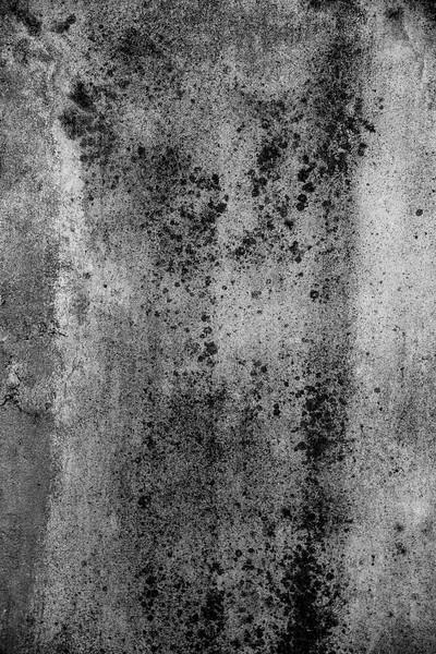 50-Lindsay-Adler-Photography-Firenze-Textures-BW.jpg