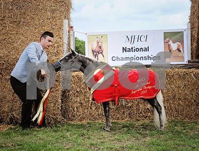 MHCI CHAMPIONSHIPS 2013